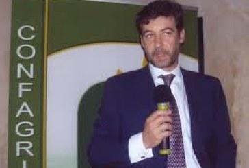 """A Roma il convegno """"Alimenta il Pil"""". Guidi (Confagricoltura): serve un hub per lo sviluppo del settore agroalimentare e un'agricoltura """"3.0"""""""