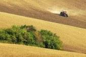 Agricoltura europea: calano le aziende, ma crescono i biologico e le agro energie