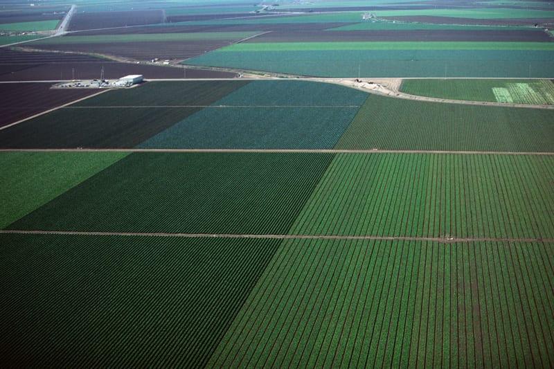Riforma del biologico, nuove normative UE