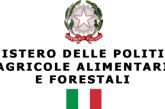 Mipaaf: accordo con GDO per promozione prodotti DOP e IGP in Italia