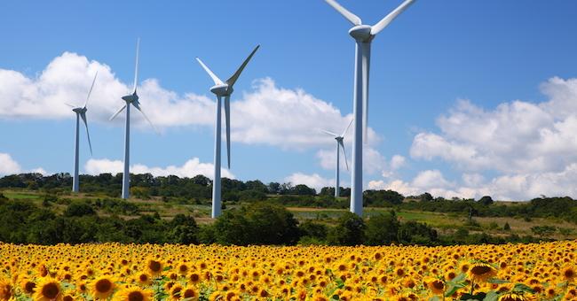 fonti-rinnovabili-agricoltura biologica