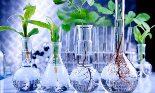 Agricoltura_ricerca_innovazione