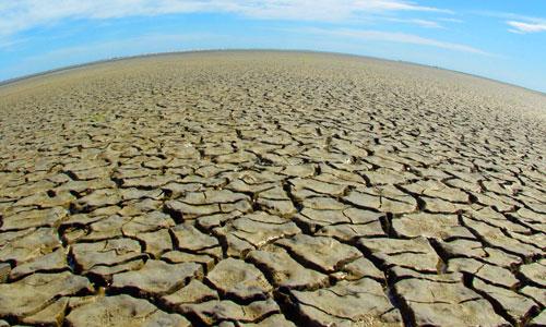 Sostenibilità e sicurezza alimentare: la grande sfida alla COP 21 insieme al clima