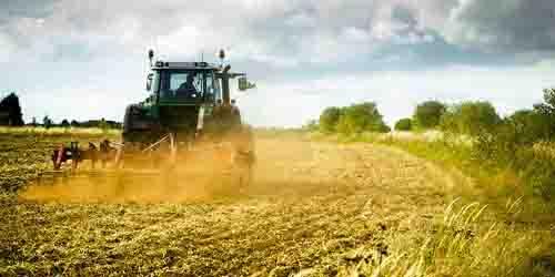 Coldiretti: 20mila posti per giovani agricoltori grazie ai Piani di Sviluppo rurale