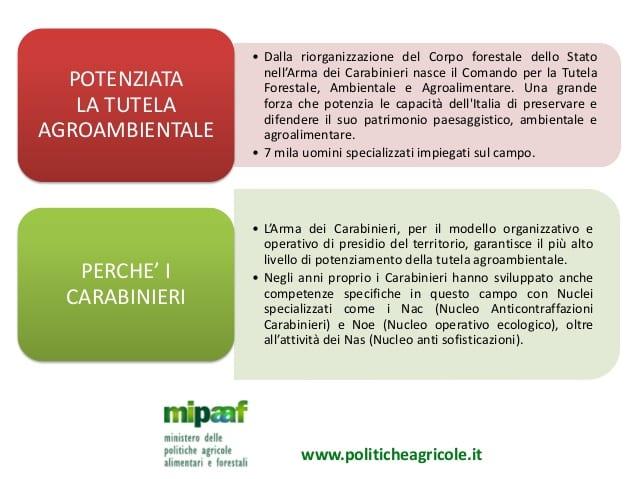 Nasce il Comando per la Tutela Forestale, Ambientale e Agroalimentare