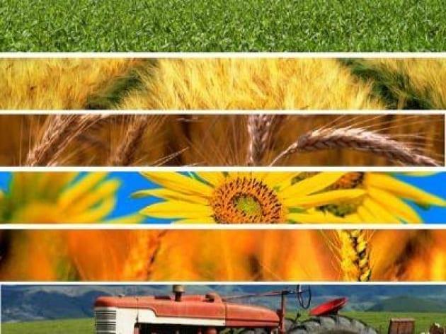 Giornata nazionale della qualità agroalimentare