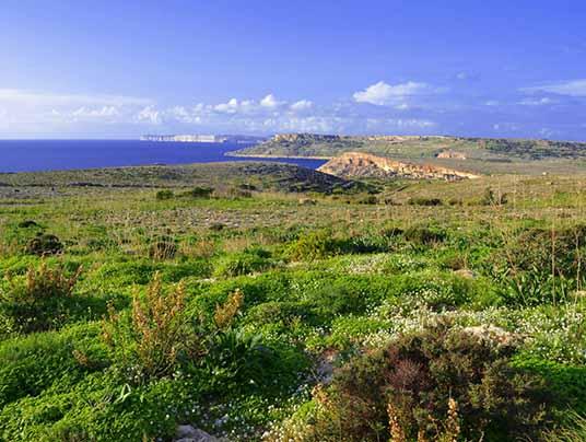 Malta in prima linea per bandire il glifosato