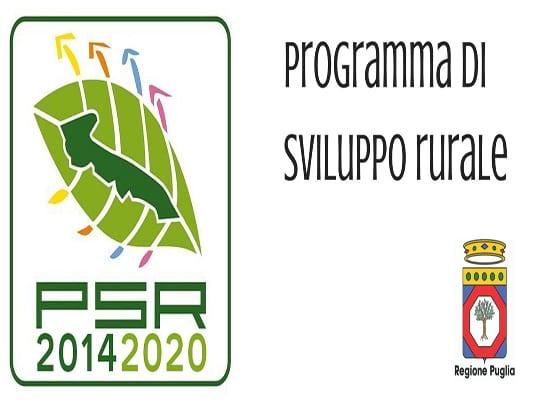 Psr Puglia, 60 mln per aziende agricole. Obiettivi: innovazione e sostenibilità