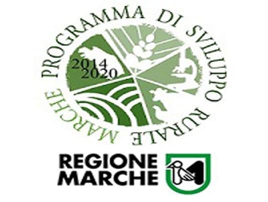 PSR Marche: bando per GO in materia di produttività e sostenibilità