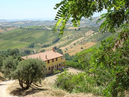 Psr Abruzzo, 3 milioni per le aziende agricole bio