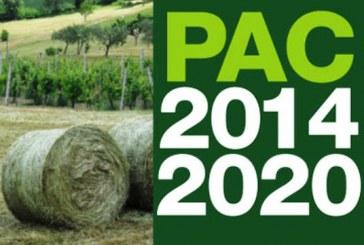 Riforma Pac 2020: cambiare l'agricoltura per premiare la sostenibilità