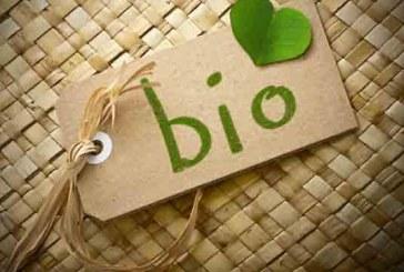 Continua la crescita del mercato bio