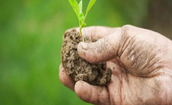 Testo Unico sul biologico a un passo dall'approvazione
