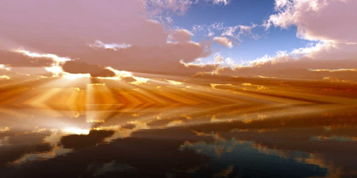 """Giornata mondiale dell'Ambiente, FederBio: """"Tuteliamo la natura con il bio"""""""