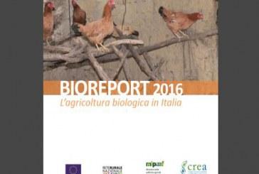 Pubblicato BIOREPORT 2016, le opportunità e sfide del bio in Italia