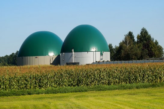 Digestato da biogas in agricoltura biologica: presto un vademecum per l'utilizzo