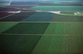 Ogm in Italia: l'Ue impone di eliminare il divieto di coltivazione