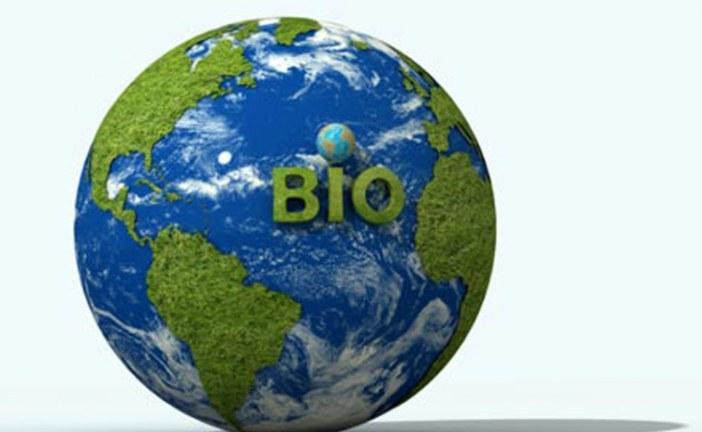 Il bio ha un ruolo chiave per la sostenibilità alimentare globale: lo studio