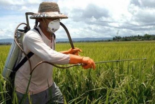 Agricoltura sostenibile e biodistretti: appuntamento a Padova
