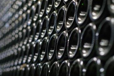 Il Borro, azienda certificata da Suolo e Salute, sarà presente ad Anteprime Toscana con la nuova annata 2016 di vino biologico