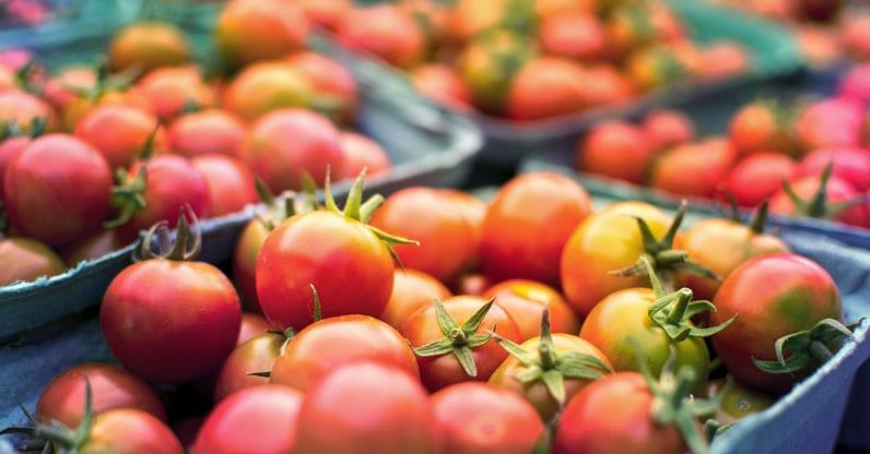 Nell'agricoltura sociale vince il biologico. La Rete rurale presenta il rapporto sull'agricoltura sociale in Italia.
