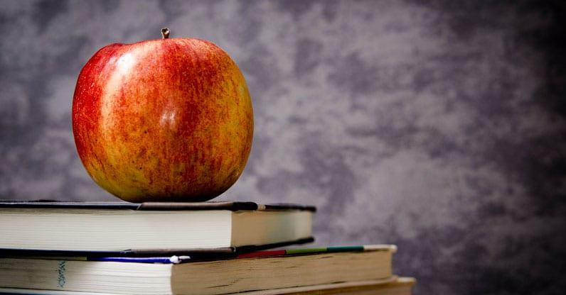 Certificazioni di qualità per le mense scolastiche biologiche