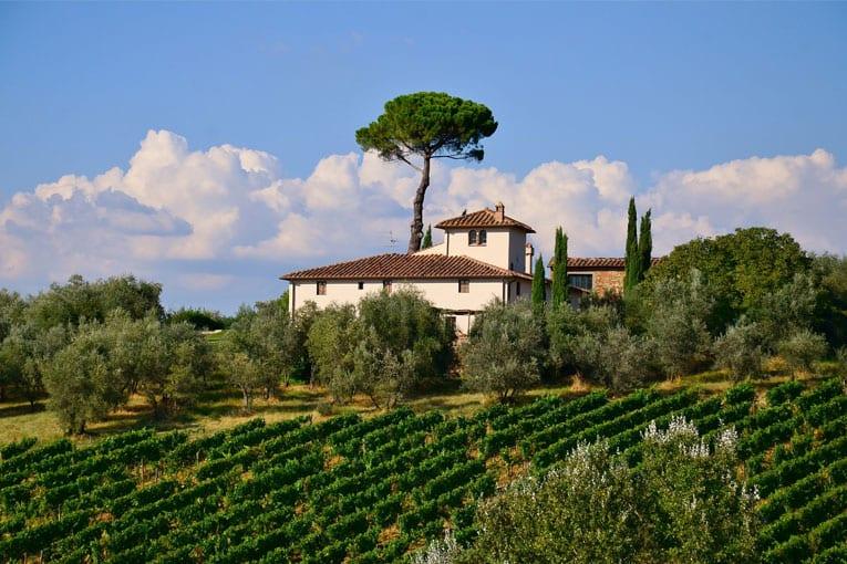 Il biologico Italiano è tra le nostre eccellenze più sicure