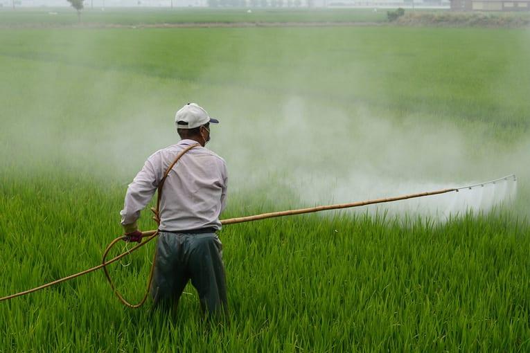 USA: Monsanto in tribunale per la pericolosità dei suoi diserbanti