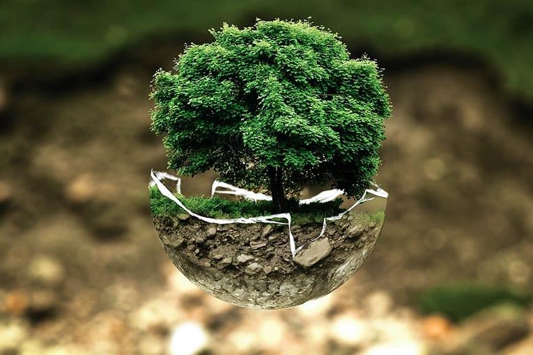 L' Agricoltura Biologica una cura per i cambiamenti climatici