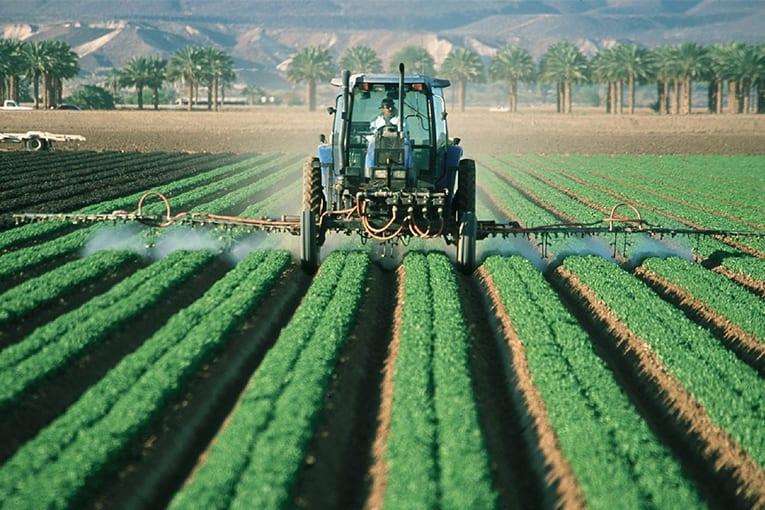 L'autorizzazione del pesticida Clorpirifos non è idonea