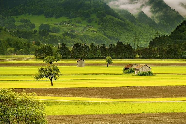 La Rivoluzione Verde del '900 è finita: il futuro è nel biologico