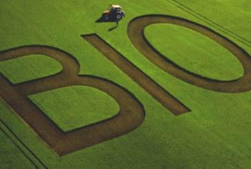 Il primo sì alla Camera in favore dell'agricoltura biologica