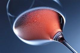 Azienda Vinicola Masari: verso il primo vino DOC bio d'Europa