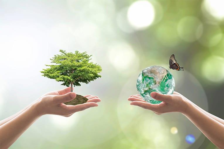 Per un'agricoltura bio sostenibile occorre più innovazione