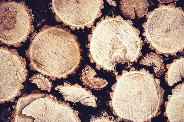 La filiera del legno e dell'agricoltura biologica: no agli imballaggi di plastica
