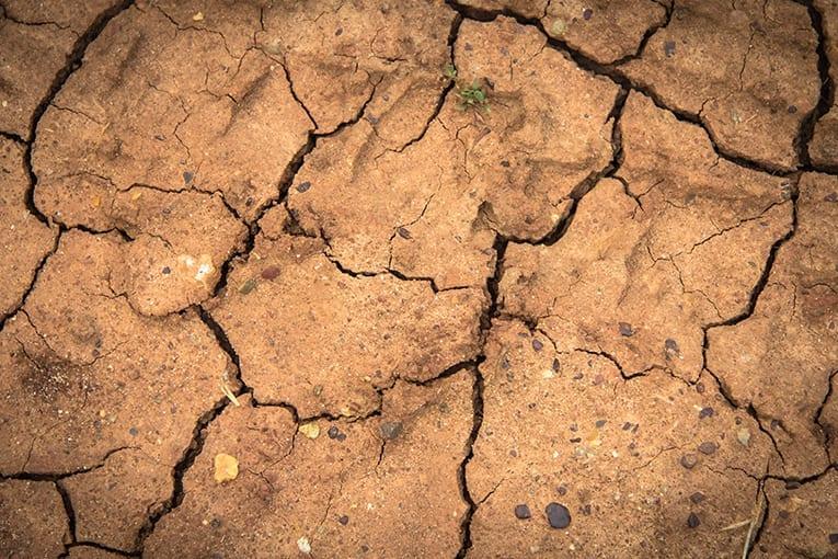 Il 29 luglio ha segnato l'Earth Overshoot Day