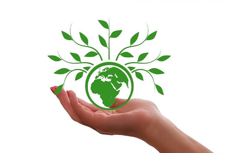 Biologico: la soluzione ai cambiamenti climatici