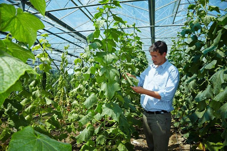 L'Italia è prima in Europa per numero di giovani che hanno scelto l'agricoltura