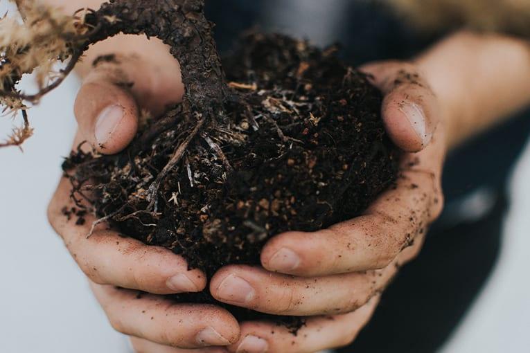 """Plauso di Suolo e Salute per la nascita della """"Re Soil Foundation"""""""