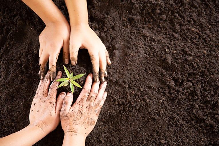"""""""Considera la Terra"""": lezioni dal passato per una nuova modernità"""