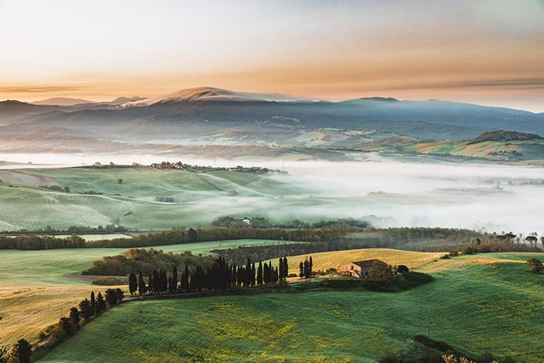 Toscana: misure straordinarie per il sostegno all'agricoltura bio