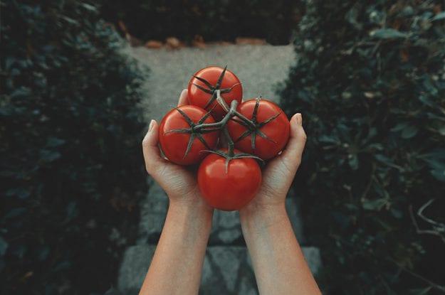Una nuova sezione merceologica per il pomodoro bio