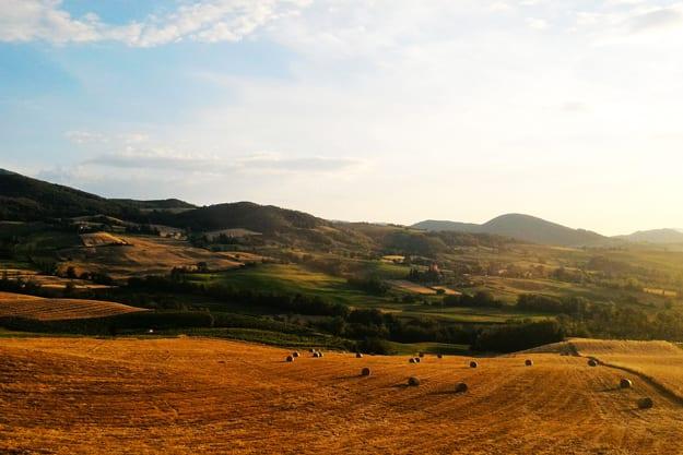 UN FONDO DI GARANZIA PER UN'AGRICOLTURA GREEN