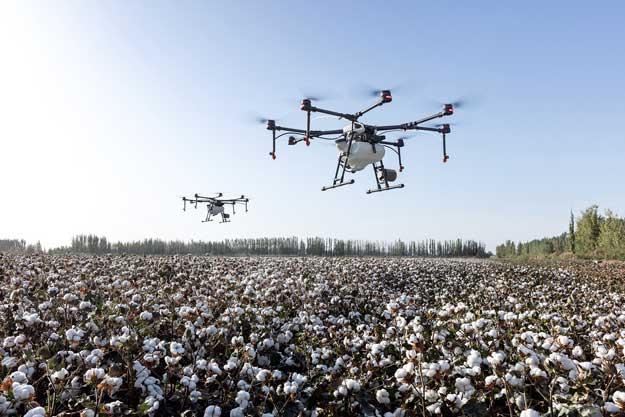 AGRICOLTURA DI PRECISIONE E AGRICOLTURA BIOLOGICA: UNA POSSIBILE ALLEANZA PER L'AMBIENTE