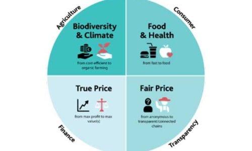 FARM TO FORK: IL BIOLOGICO EUROPEO DOVRÀ AUMENTARE DEL 165%