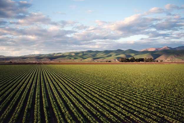 AGROECOLOGY FOR EUROPE (AE4EU): AZIONI CONGIUNTE PER SISTEMI PIU' SOSTENIBILI