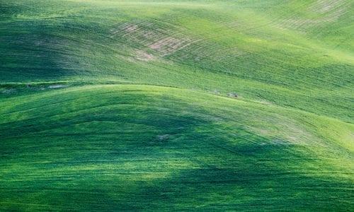 TRANSIZIONE ECOLOGICA DELL'AGRICOLTURA: SEMPRE PIÙ NECESSARIA UN'INVERSIONE DI ROTTA